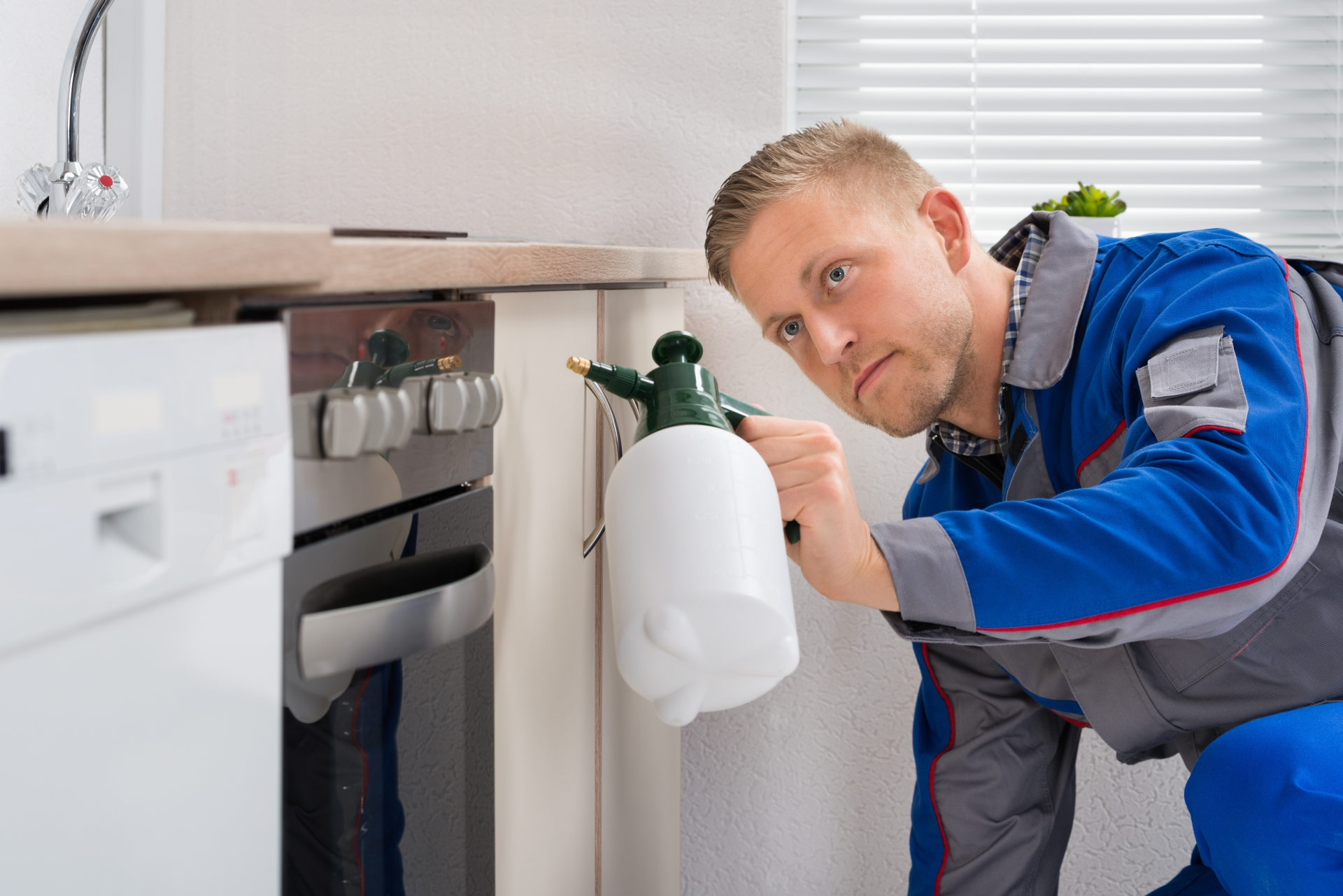 Pest Inspection, Pest Control in Walton-on-Thames, Hersham, KT12. Call Now 020 8166 9746