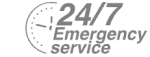 24/7 Emergency Service Pest Control in Walton-on-Thames, Hersham, KT12. Call Now! 020 8166 9746